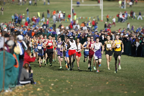 illinois state cross country meet 2014